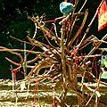 bizaroide yurtao