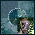Un <b>chameau</b> Scrap digital de Kokhine