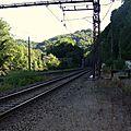 Estivaux (Corrèze - 19) 2