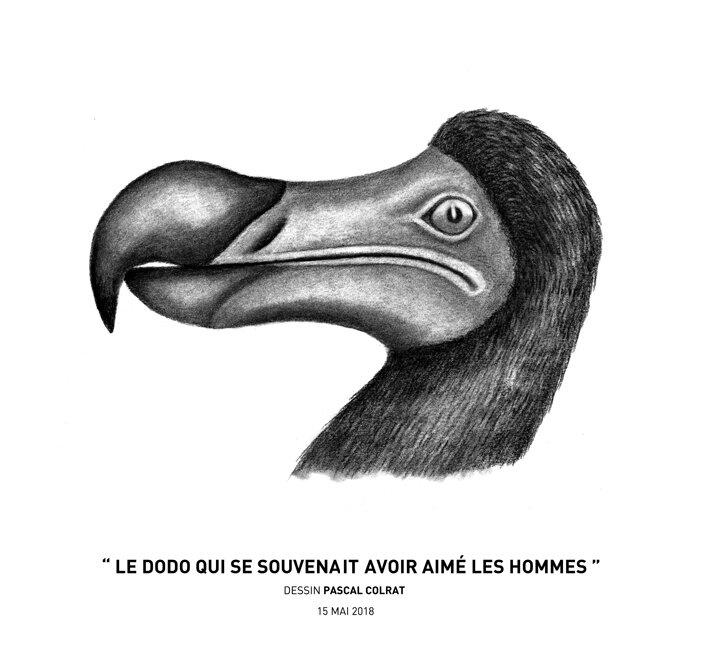 __le_dodo_qui_se_souvenanit_avoir_aime__les_hommes__