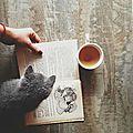 Fox&Tea