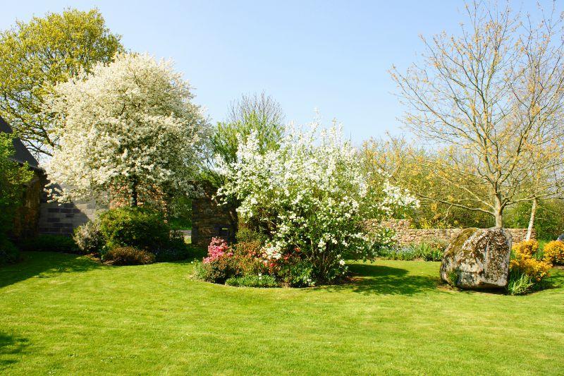 jardin printemps 2009 036