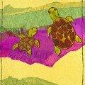 Hippolyte Les tortues enfant