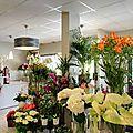 Visite à la Une : Le <b>Temps</b> des <b>Fleurs</b> à Pouilley les Vignes