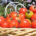 Tomates séchées et confites à l'huile d'olive pour un pique-nique à bord d'amzer'zo!