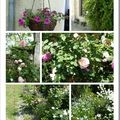 Jardin au mois de mai ............................
