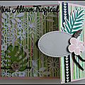 Aperçu du Mini Album Tropical (<b>atelier</b>)