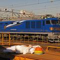EF 510-500 'Hokutosei' Oku depot