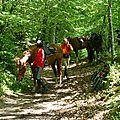 balade equestre gastronomique à La Lucerne d'Outremer (106)