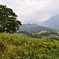 Un jour en forêts d'Aspe Barétous, le 5 septembre 2012...