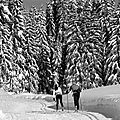 Neige en noir et blanc