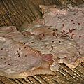 Fumage de la viande avec le cobb