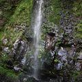 2009 06 24 Cascade du saut du loup (3)