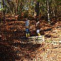 Douceurs d'automne #13