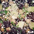 Salade multicolore aux pois chiches