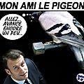Le pigeon,