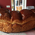 Le blog brioche de daninature