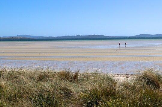 Tasman peninsula09