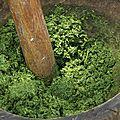 Pondu ou saka-saka (congo brazzaville)