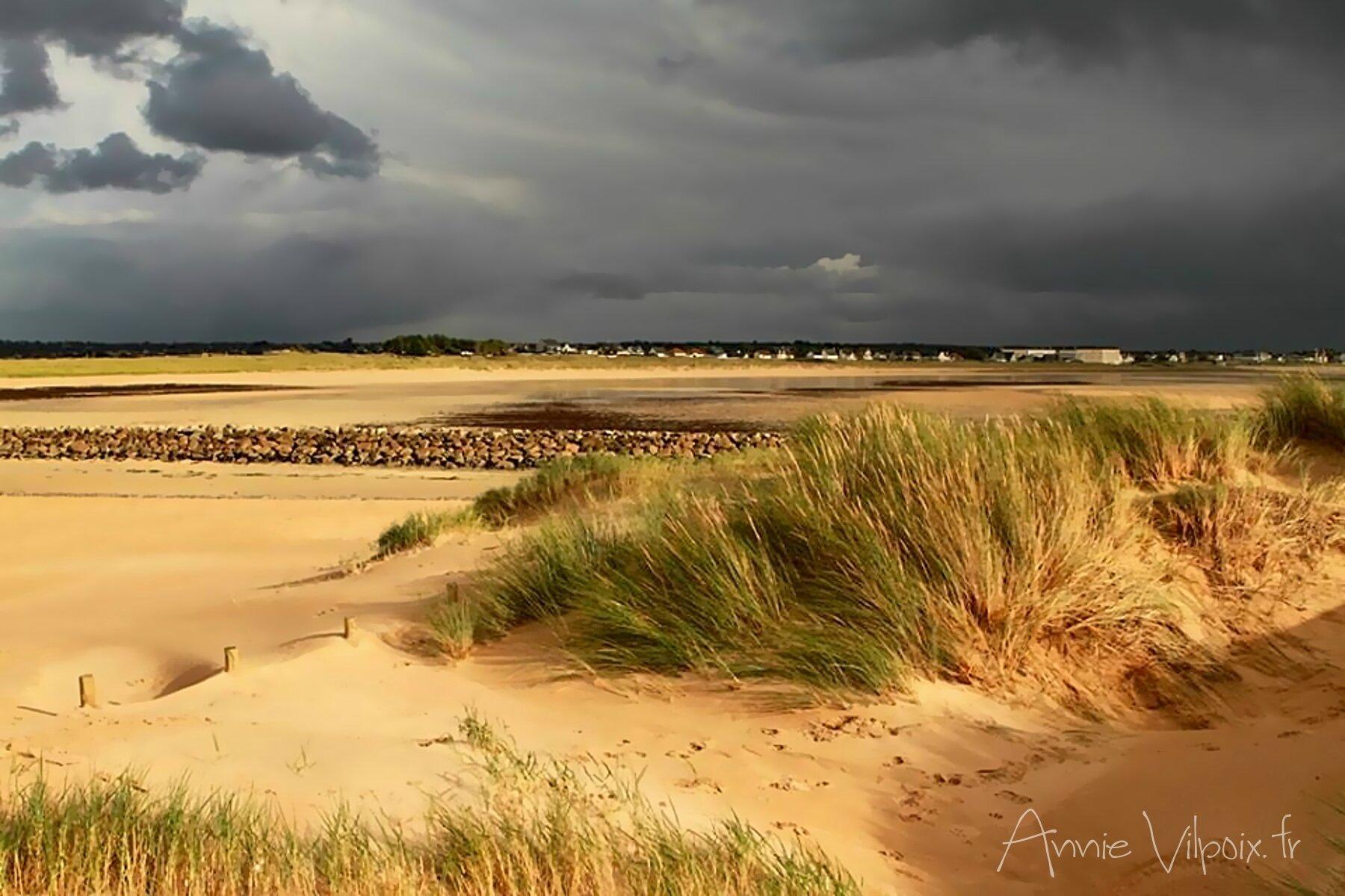 Les dunes, le sable et la mer...
