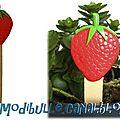 pic jardin fraise