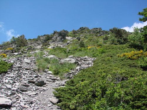 2008 06 26 Le chemin d'axé pour monté au sommet du Mont Gerbier de Jonc