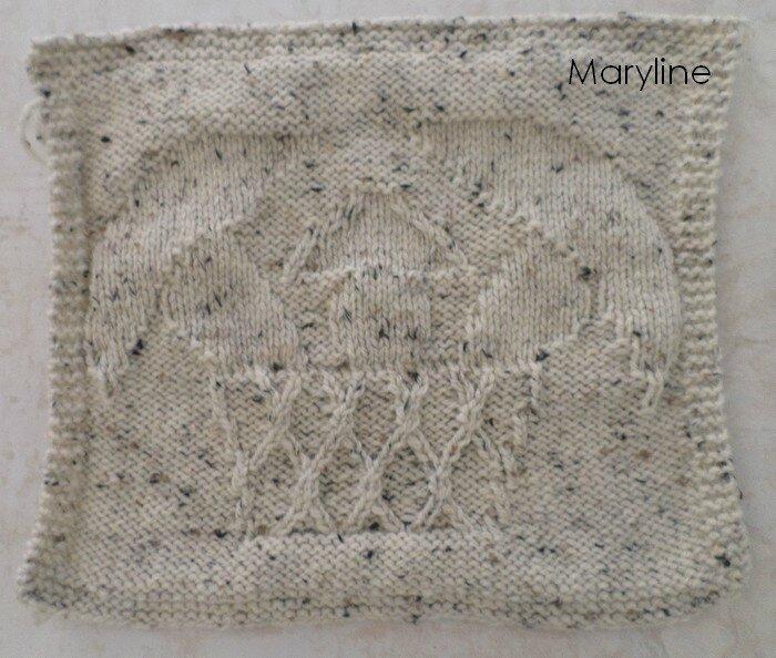 Cèpes Maryline