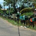 Balata, quartier de Matoury