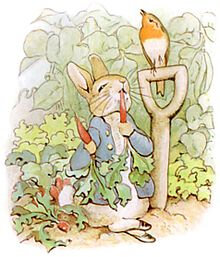 PeterRabbit8