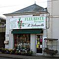 Delamotte p fleuriste les aix-d'angillon cher aptonyme