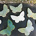 Papillons sous-plats