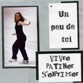 patiner (927 x 866)
