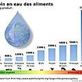 L'eau virtuelle, un concept dont nous devons prendre conscience