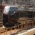 '和 Nagomi' JR E655系, Shinjuku station