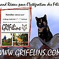 www.grifel