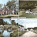 WALLERS-TRELON-Multivues