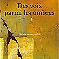 <b>Karel</b> <b>SCHOEMAN</b>, Des voix parmi les ombres - Rentrée littéraire 2014