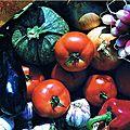 Légumes du midi