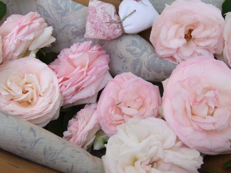 Panier Roses - Copie