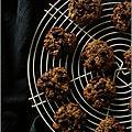 COOKIES AUX FLOCONS D'<b>AVOINE</b>, BEURRE DE CACAHUÈTES & CHOCOLAT
