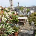 Terrasse de ma guest house