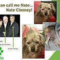 You can call me... Nate <b>Clooney</b>