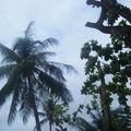 Thailande - Pattaya
