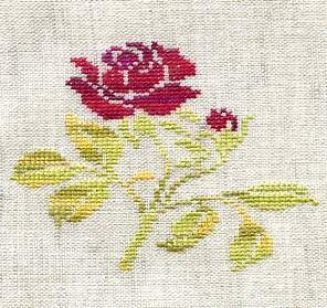 Petit Rose sur toile non reguliere
