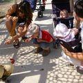 2008 05 Meo et poules au parc Mag