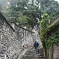 Avignon (V