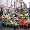 Touches de couleurs à St Stephen's Green