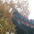 Xiangshan gong yuanr
