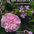 Roses d'excellence - Alain Tschanz