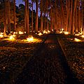Skogskyrkogården_at_All_Saints_Day_2010-2 wikipedia
